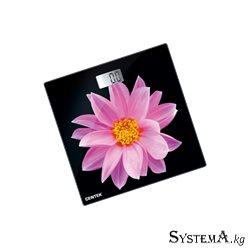 CENTEK CT-2416 Pink Flower