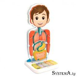 Интерактивный игрушка Занимательная Анатомия Oregon Scientific SA218