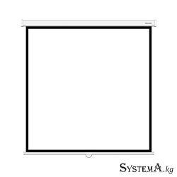 Экран механический Deluxe DLS-M203xW, Настенный/потолочный, Рабочая поверхность 195х195 см., 1:1, Matt white, Белый