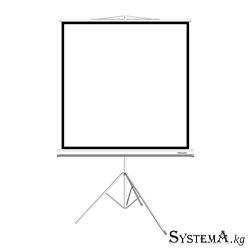 Экран на треноге Deluxe DLS-T203xW, Рабочая поверхность 195х195 см., 1:1, Matt white, Белый